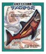 立体モデル大図鑑—サメのからだ    こどもライブラリー