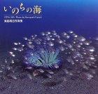 いのちの海—海島晴由写真集