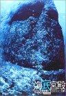 """海底宮殿—沈んだ琉球古陸と""""失われたムー大陸"""""""