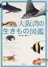 大阪湾の生きもの図鑑