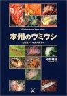 本州のウミウシ—北海道から奄美大島まで