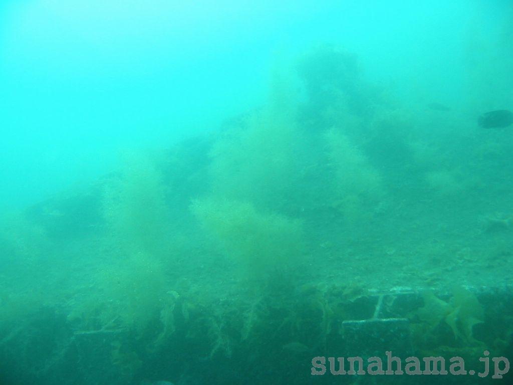 春の海 1024×768