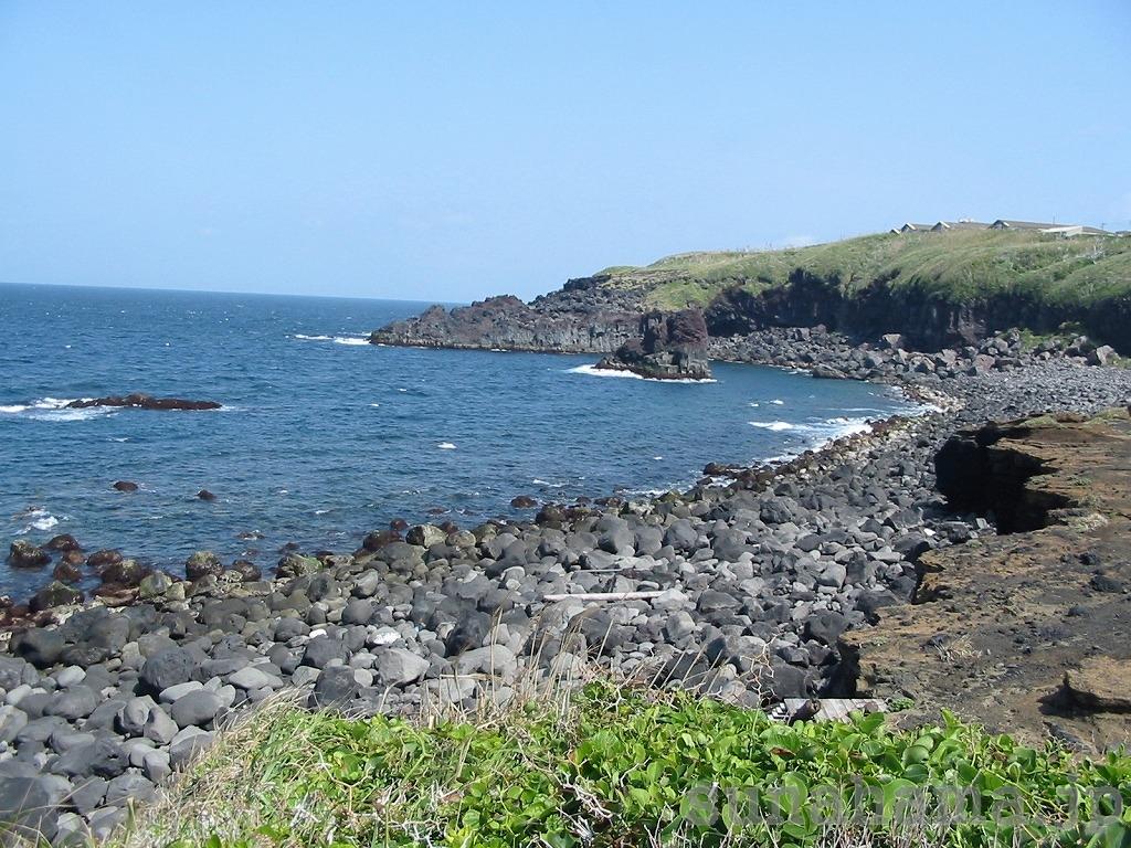 富賀浜の壁紙 1024×768【伊豆の海中壁紙 水中写真を壁紙にしました!】