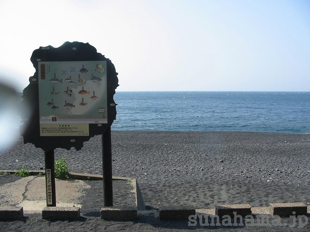 大久保浜の壁紙 1024×768【伊豆の海中壁紙 水中写真を壁紙にしました!】