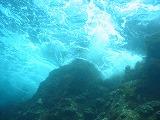 波の壁紙【伊豆の海中壁紙 水中写真を壁紙にしました!】