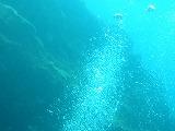 泡の壁紙【伊豆の海中壁紙 水中写真を壁紙にしました!】