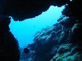 洞窟の壁紙【伊豆の海中壁紙 水中写真を壁紙にしました!】