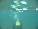 ダイバー2【伊豆の海中壁紙 水中写真を壁紙にしました!】